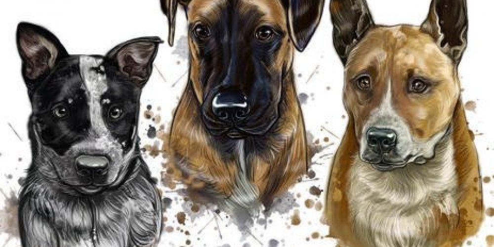 Enjoy the best Custom pet portrait for your dog or cat