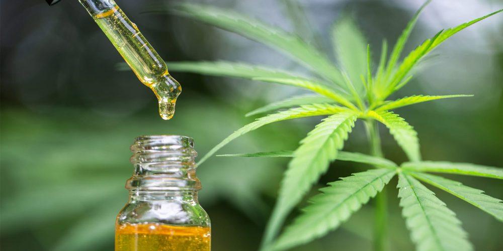 Understanding the benefits vs the risks of marijuana